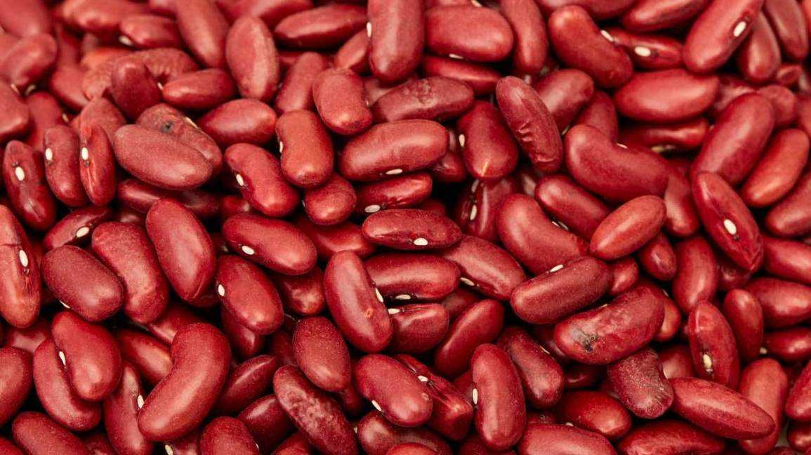 DSD Enterprises Looking for Kidney Beans